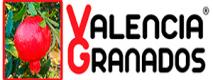 valencia-granados